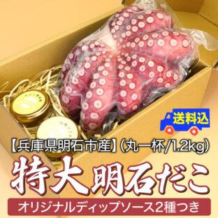 【兵庫県明石市産】特大明石だこ(丸一杯/1.2kg)オリジナルディップソース2種つき