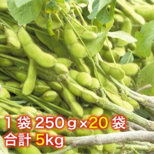 【山形県鶴岡市特産】だだちゃ豆※7月末〜9月上旬まで!5kg(1袋250g×20袋)