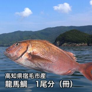 【高知県宿毛市産】龍馬鯛(タイ)1尾分 2冊(約450g)